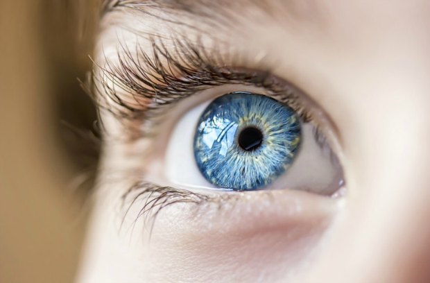 Facts About People With Blue Eyes That You Never Knew